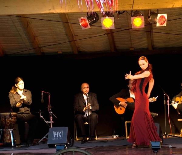 Flamencoshow Gota de Fuego
