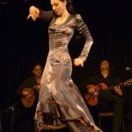 Flamenco in Hamburg vor über 10 Jahren im Goldbekhaus