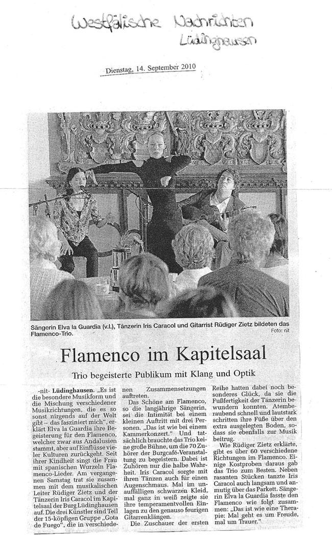 Flamenco-Gitarre