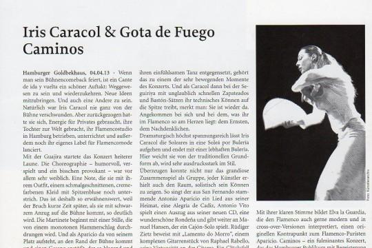 Presse Caminos Nuevos Flamenco Show